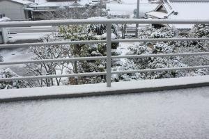 2012_02_03_yuki2