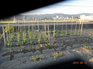 20130612_sichu